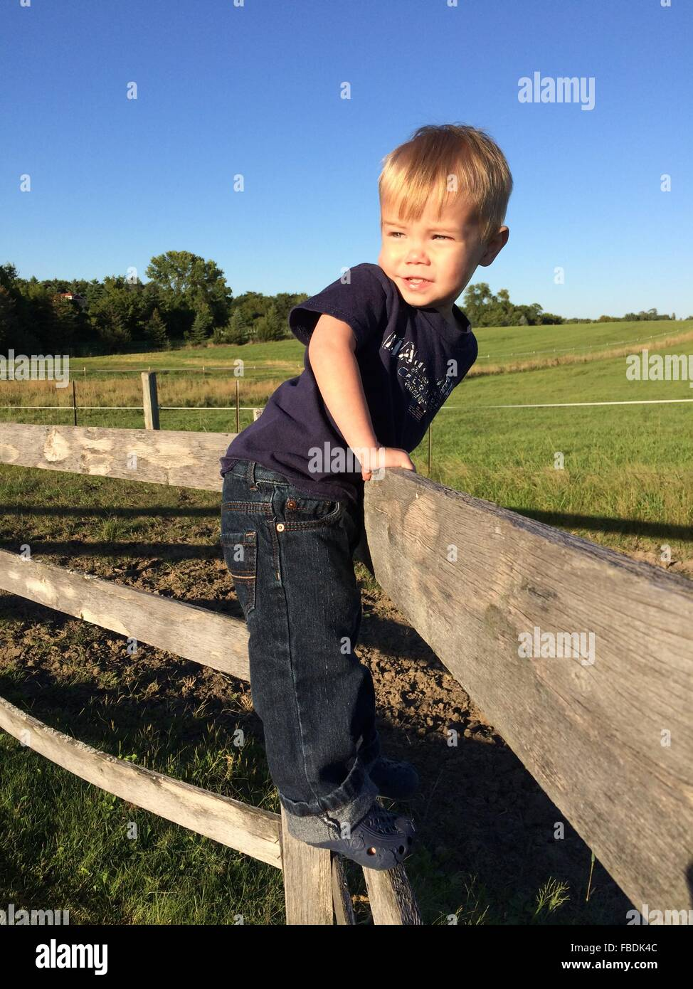 Boy Leaning Over Farm Fence - Stock Image