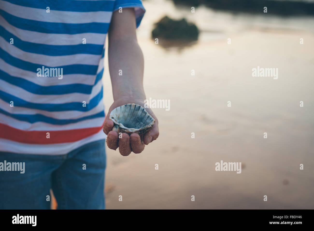 Mid Section View Of Boy Showing Seashell - Stock Image
