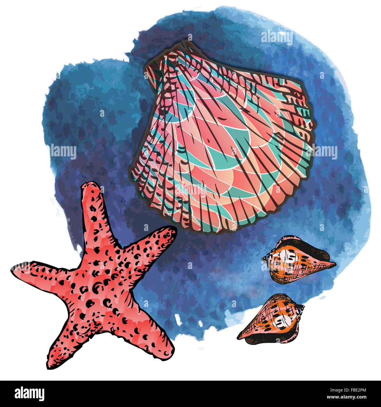Seashells and starfish on semitransparent blue background. Graphic design with sea life best suited for children. - Stock Image
