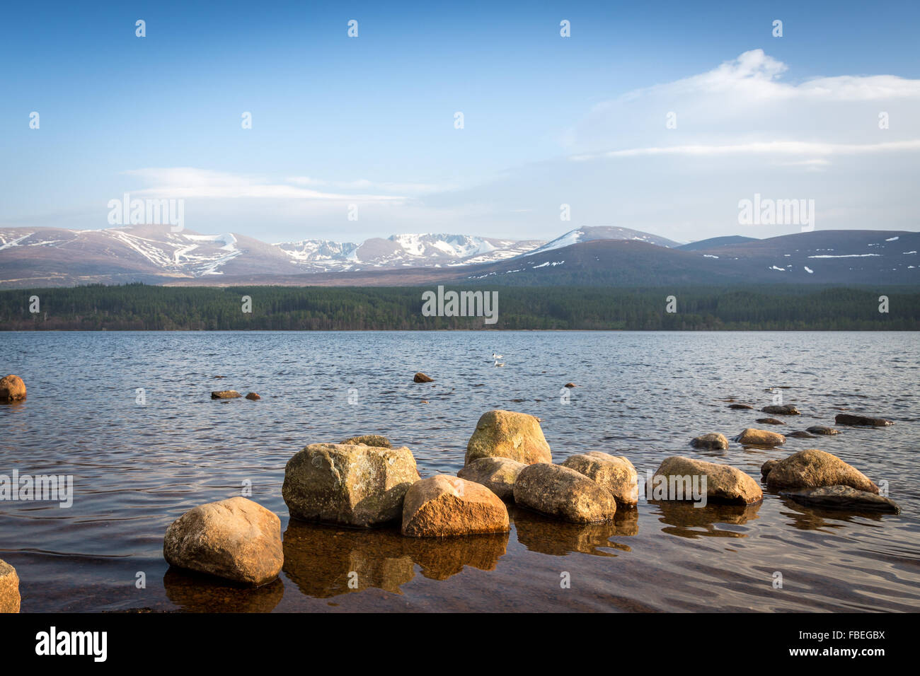 Loch Morlich, Aviemore, Badenoch and Strathspey, Scotland. Europe. Stock Photo