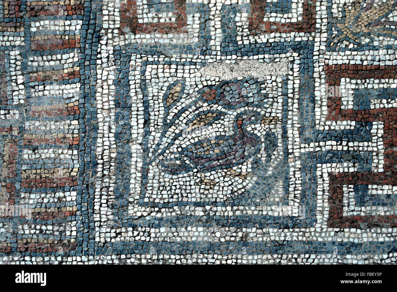 Roman Floor Mosaic of Duck & Geometric Design on the Curetes Street, Ephesus, Selçuk, Turkey Stock Photo