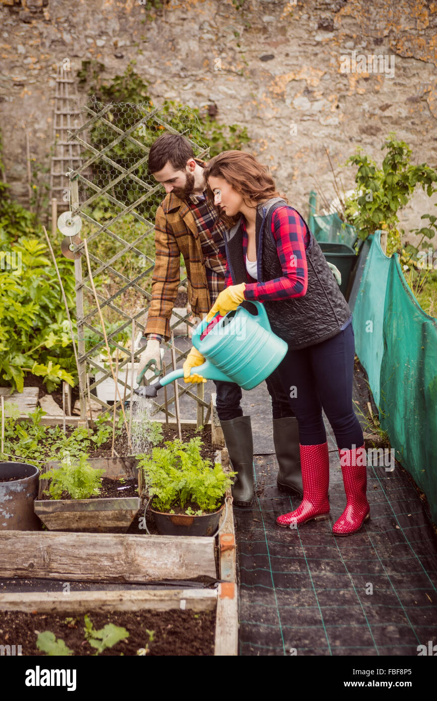 Couple watering plants together - Stock Image
