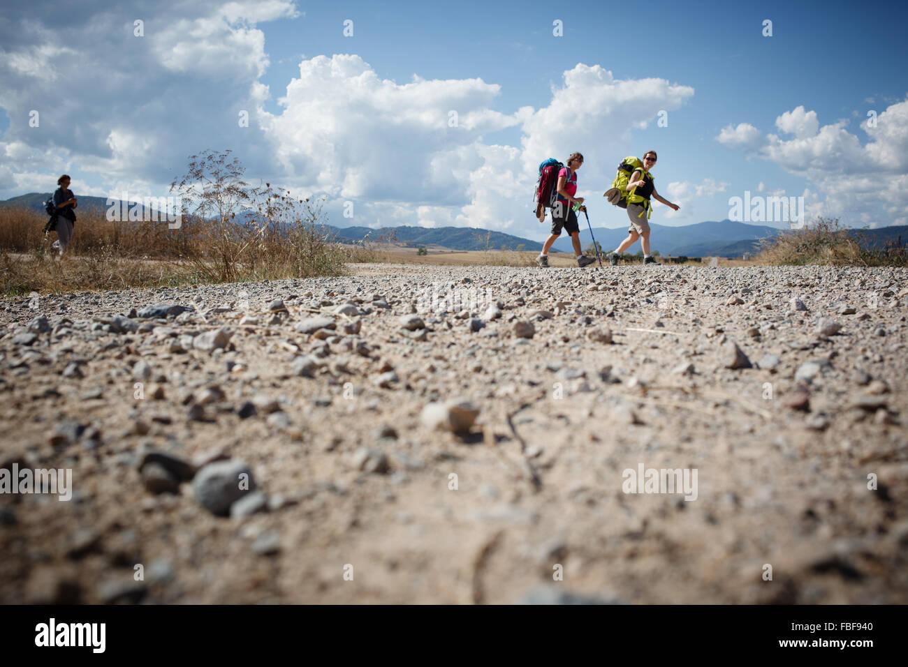 13/9/14 Pilgrims walking Camino de Santiago near Santo Domingo de la Calzada, La Rioja, Spain - Stock Image