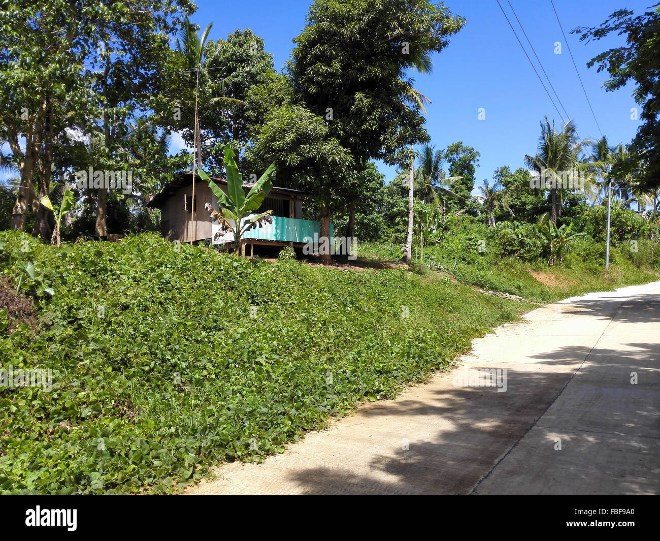 Philippines Leyte General Unpaved road through the hills  Adrian Baker - Stock Image
