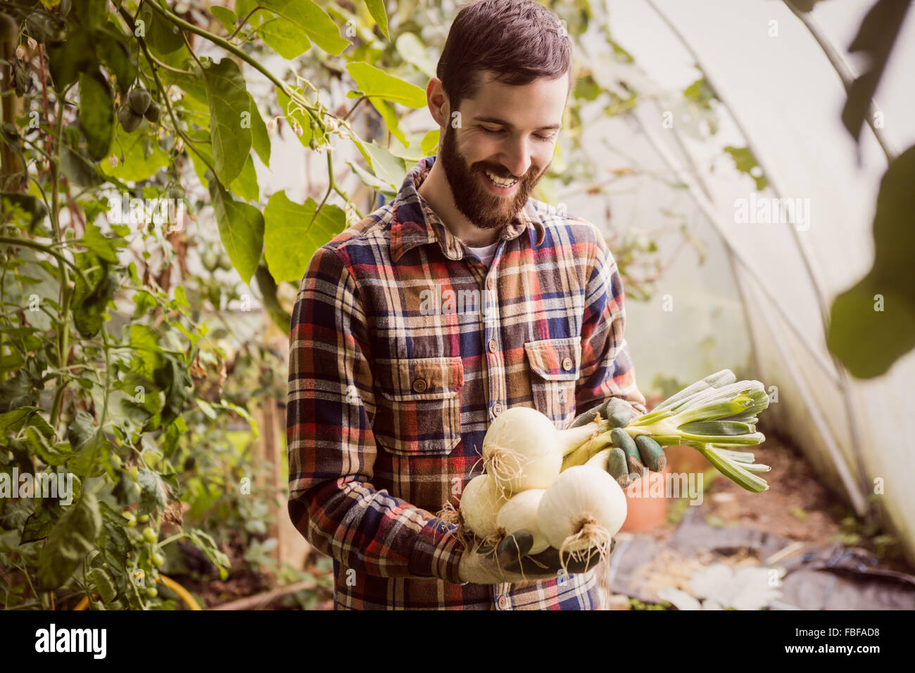 Smiling man looking at bulb - Stock Image