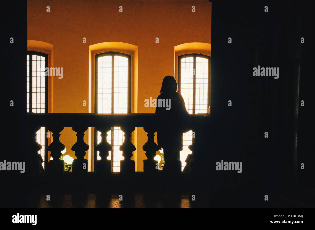 Silhouette Person Standing Against Windows Stock Photo