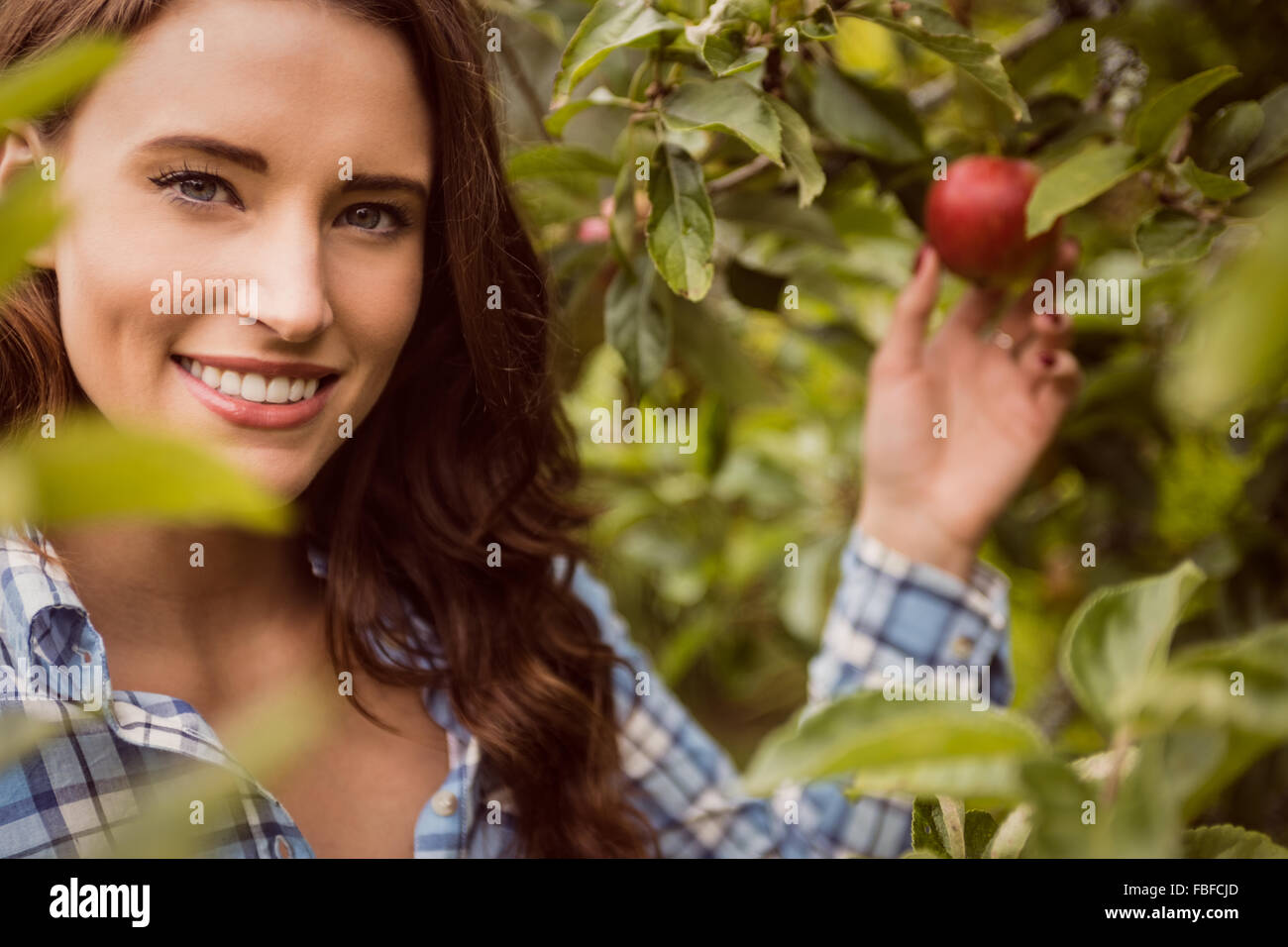 Portrait of woman touching apple - Stock Image