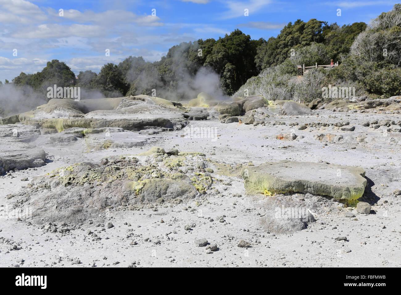 Steaming sulfurous fumaroles at Rotorua, Bay of Plenty, New Zealand. - Stock Image