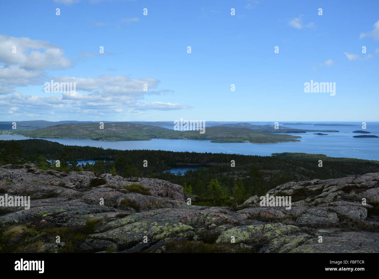 Skuleskogen National Park is a Swedish national park in Vaesternorrland County, on the coast of the Baltic Sea, - Stock Image