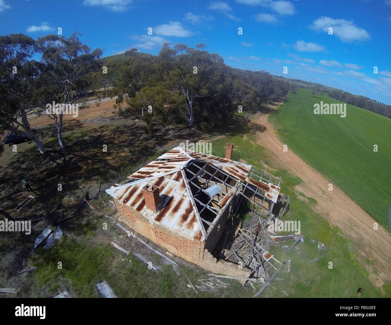 Aerial view of dilapidated historic cottage next to green wheat field, near Moora, Wheatbelt region, Western Australia Stock Photo