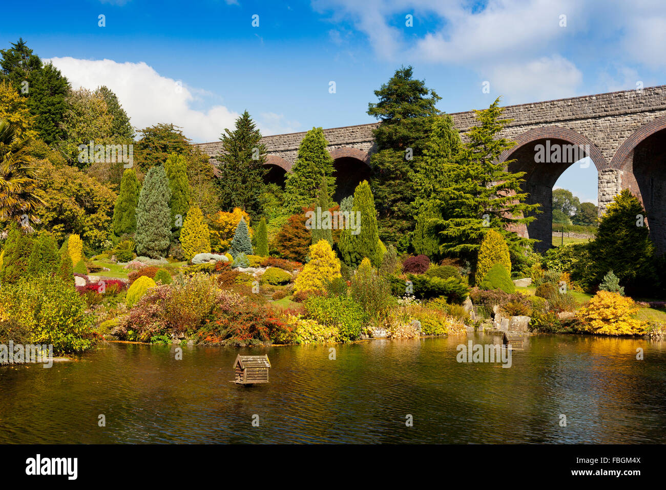 The ornamental lake and assorted conifer trees in Kilver Court Gardens, Shepton Mallet, Somerset, England, UK - Stock Image
