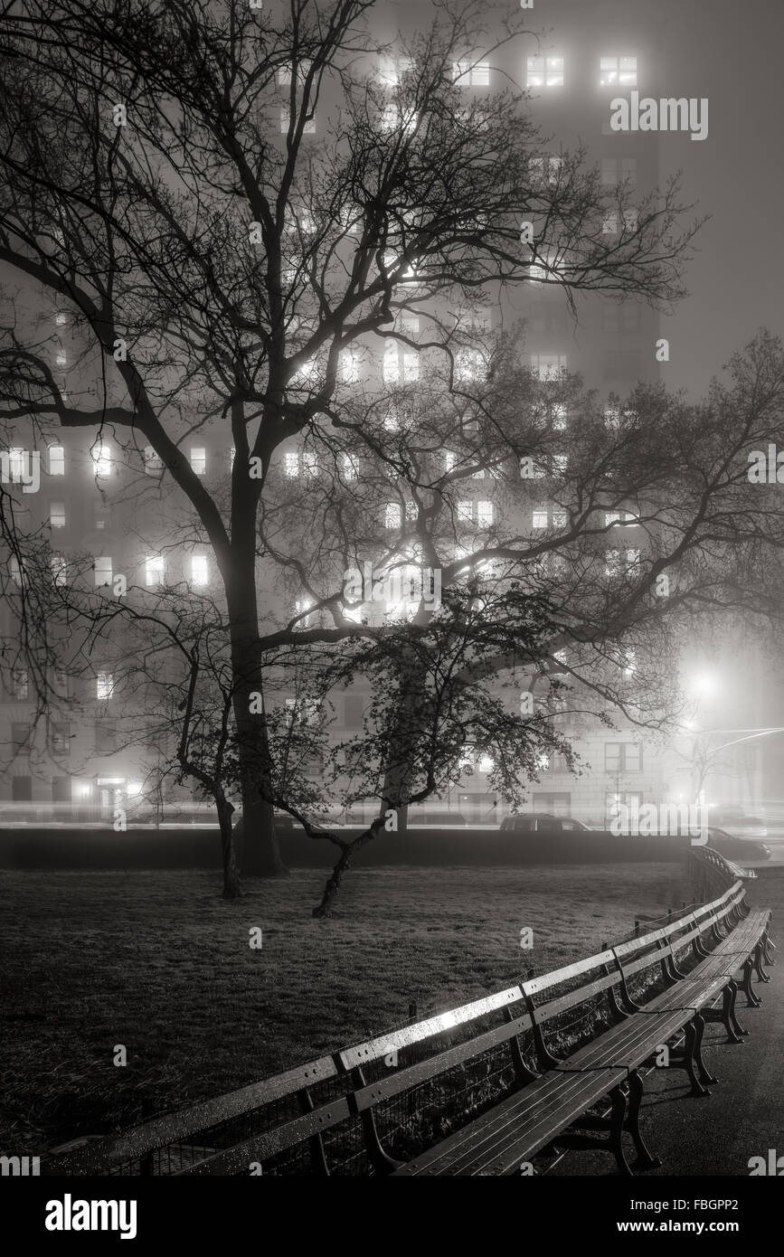 Fog in Central Park at night. Trees become silhouettes lit by the Upper West Side high-rise buildings. Manhattan, - Stock Image