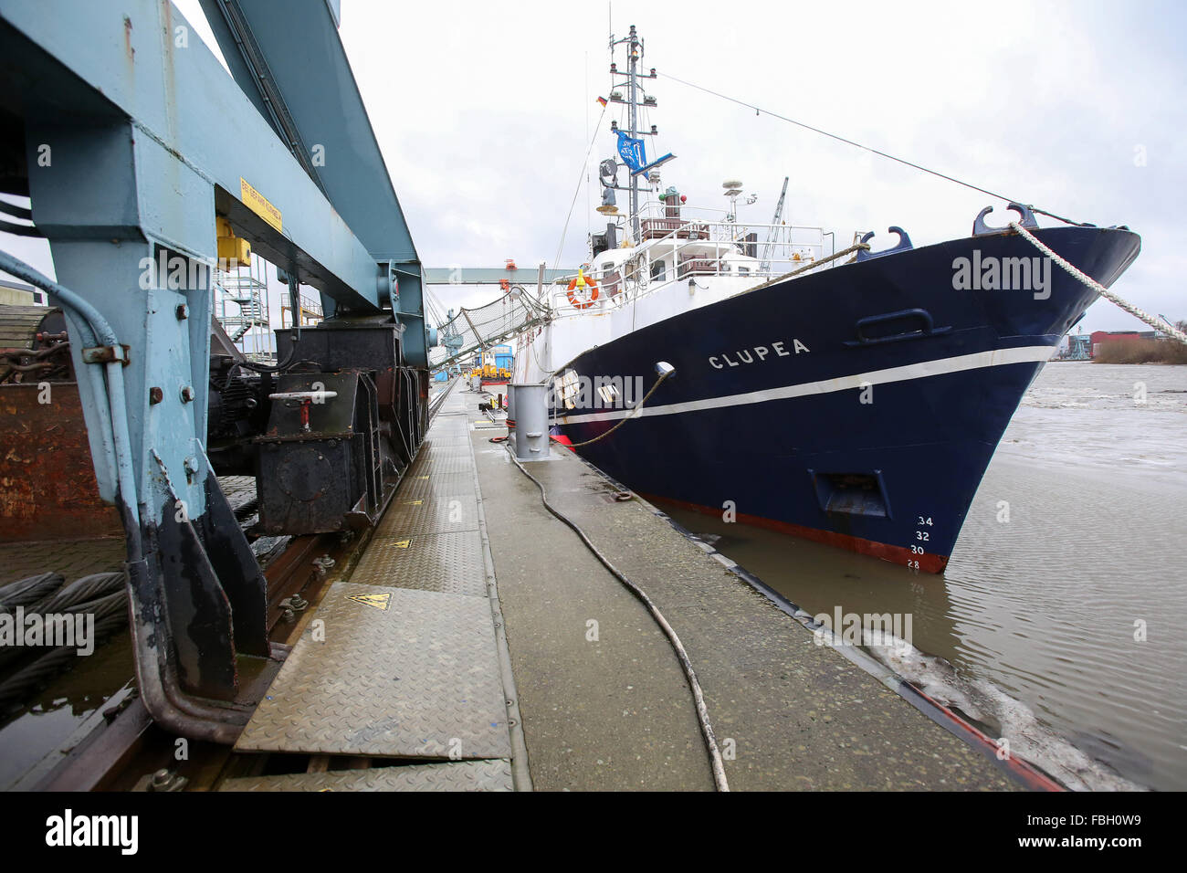 Hamburg, Germany. 8th Jan, 2016. The former research vessel 'Clupea' which is being converted to rescue - Stock Image