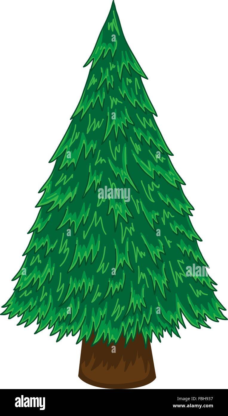 Cartoon Pine Tree On White Background Stock Vector Art