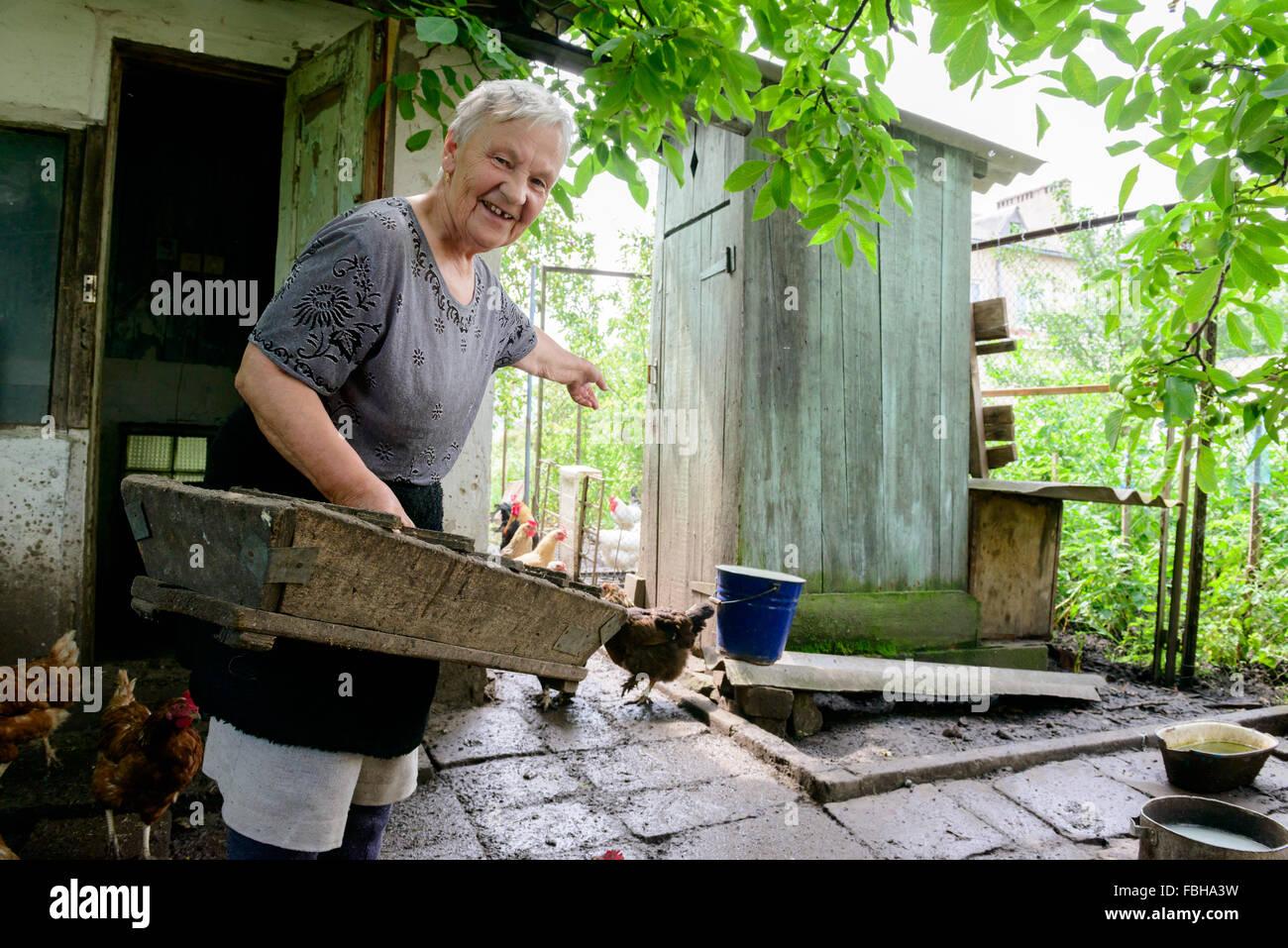 Woman farmer feeding chicken flock at a private rural farm in Ukraine - Stock Image