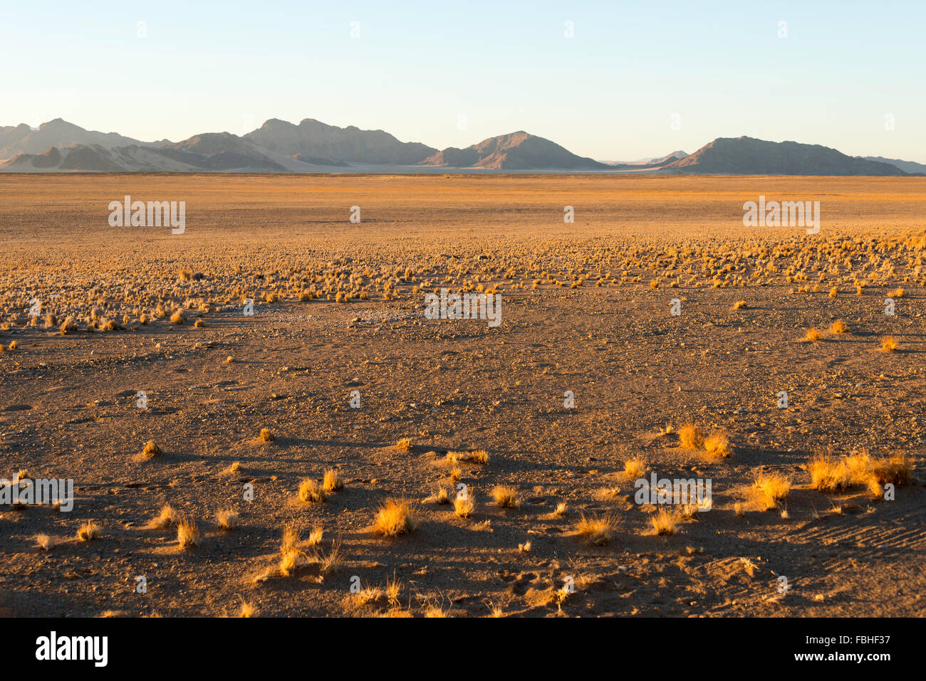 Desert scene, Namib Naukluft Park, Namib Desert, Republic of Namibia Stock Photo