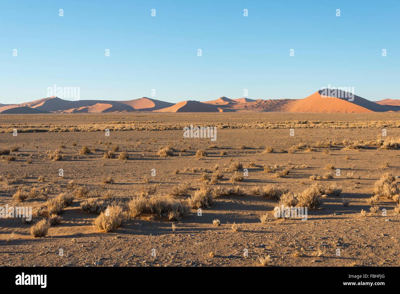 Desert scene, Namib Naukluft Park, Namib Desert, Republic of Namibia - Stock Image