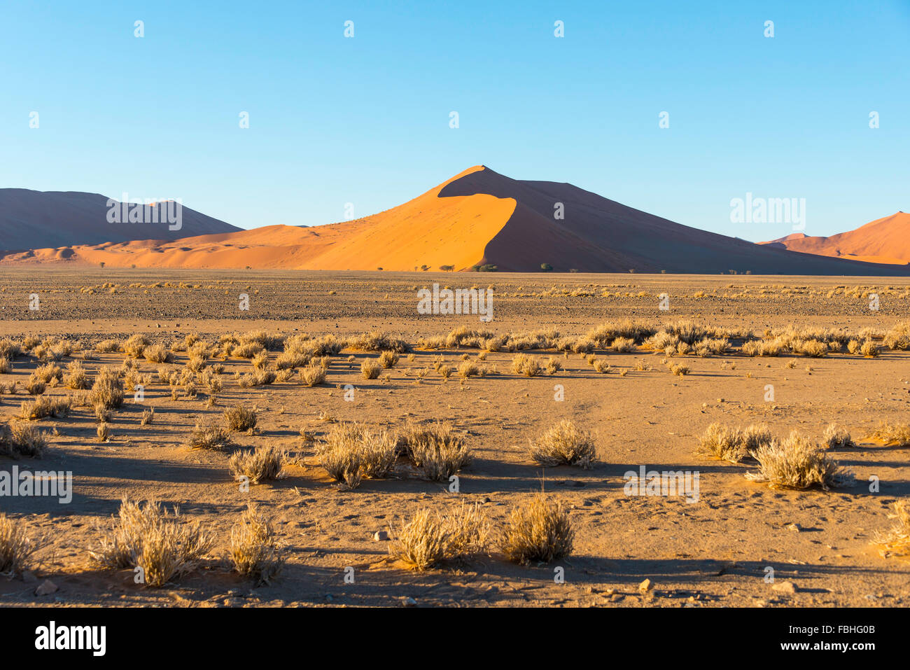Sand dunes, Sossusvlei, Namib Desert, Namib-Naukluft Park, Hardap Region, Republic of Namibia - Stock Image