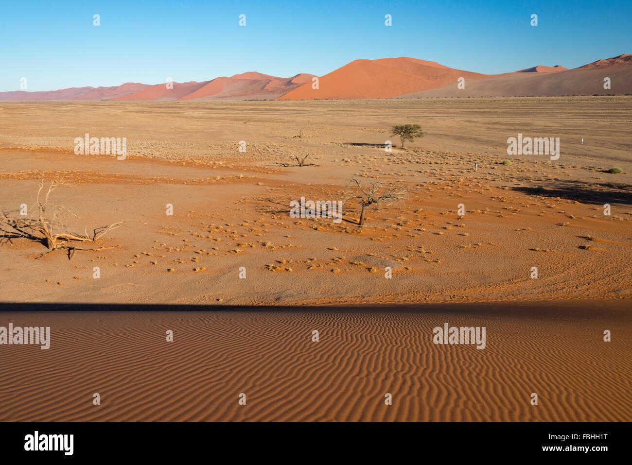 Desert view from sand dune, Sossusvlei, Namib Desert, Namib-Naukluft Park, Hardap Region, Republic of Namibia - Stock Image