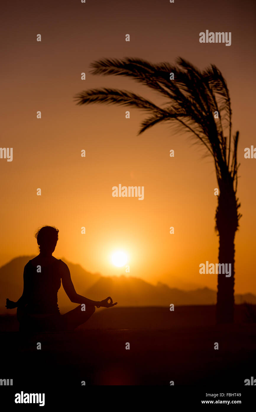 Silhouette of young woman practicing yoga in beautiful tropical location with mountains, sitting beside palm tree Stock Photo