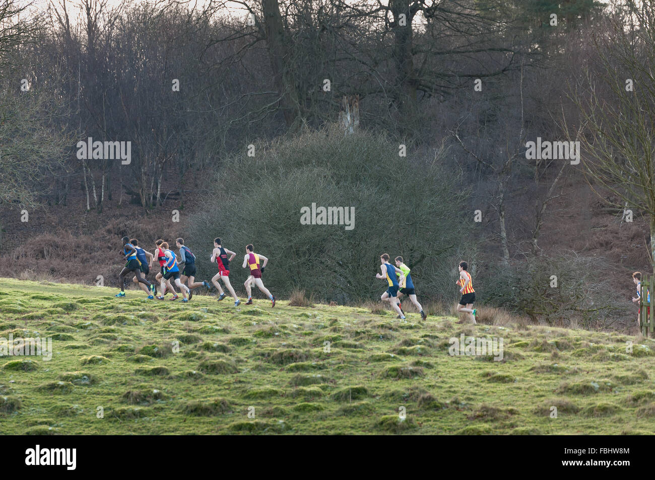 mass of crosscountry runners embarking on the first major hill to a cold frozen grassland slope in winter Stock Photo