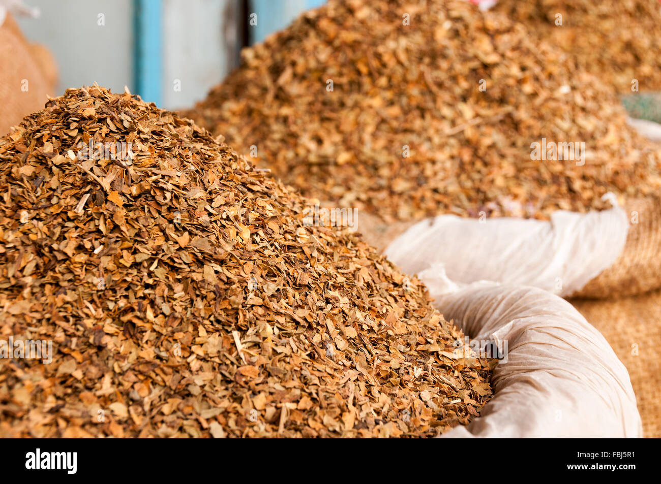 Dried tobacco leaves at the indian market - Stock Image