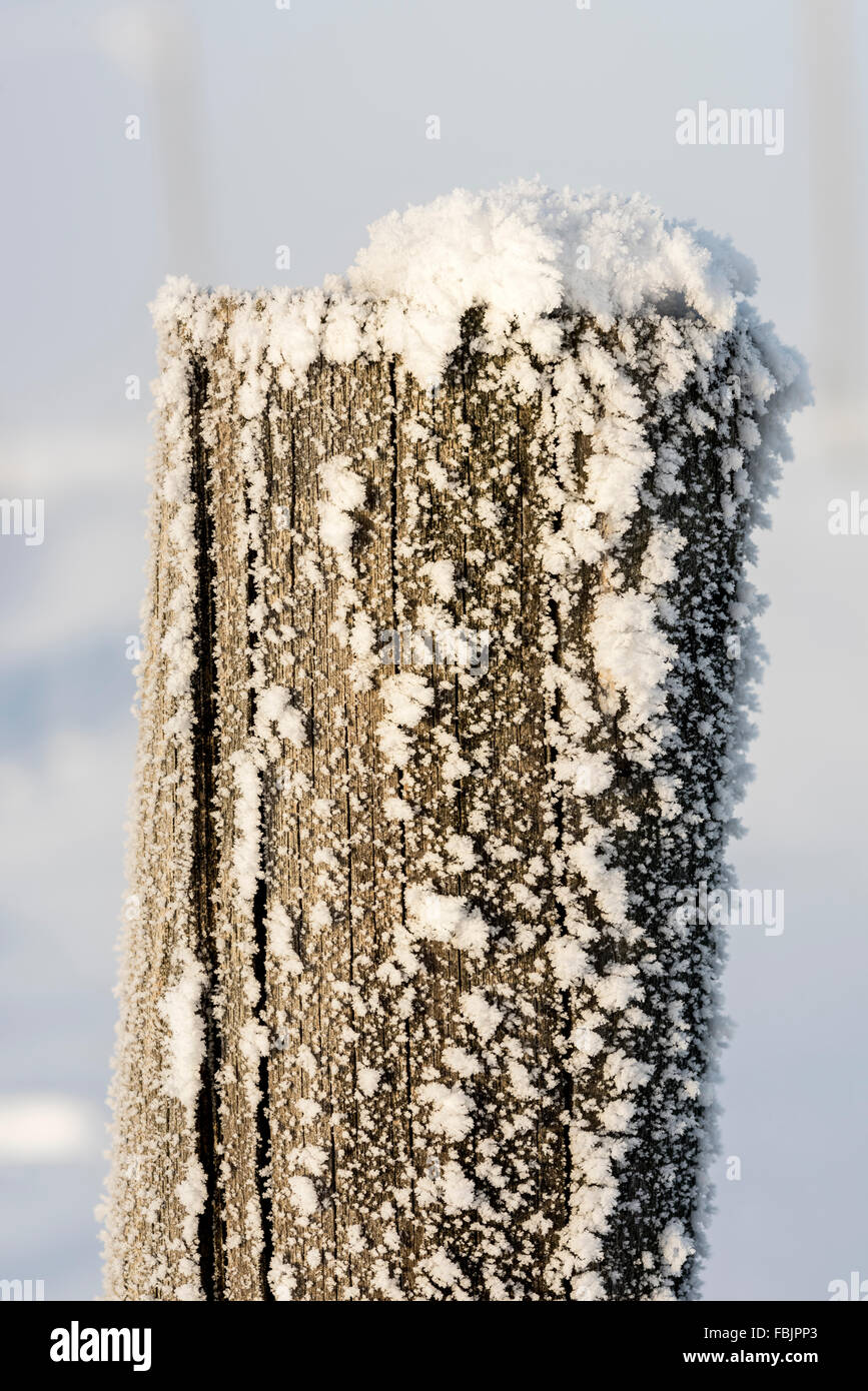 Frosty fence post closeup with snow - Stock Image