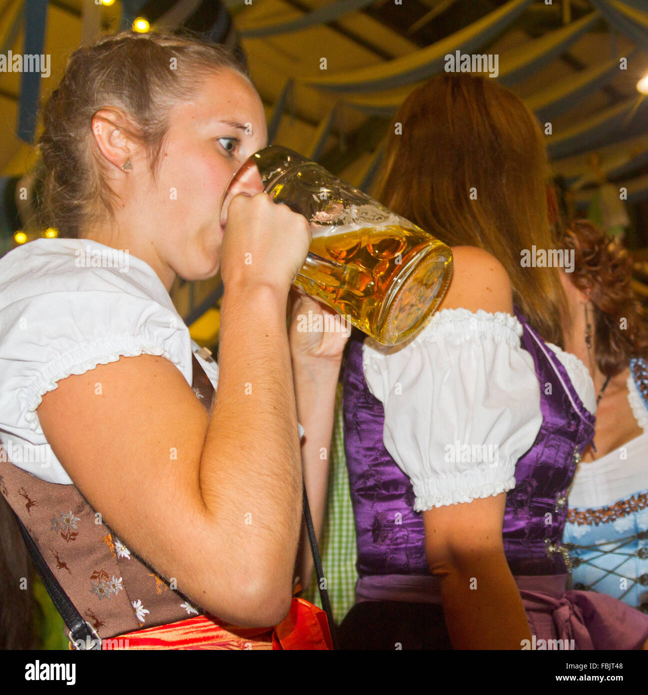 Wide-eyed young woman woman drinking beer out of a stein in a beer tent at Oktoberfest in Munich, Germany - Stock Image