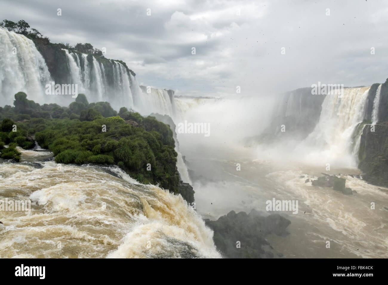 Devil's Throat with hundreds of dusky swifts, Foz do Iguacu from the Brazil side walkway - Stock Image