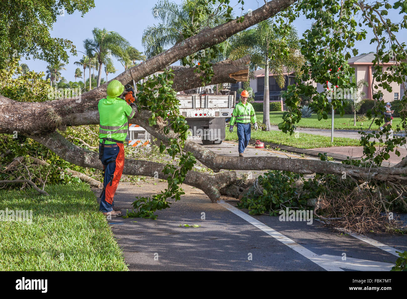 Naples, Florida, USA  17th Jan, 2016  Storm Damage and Clean