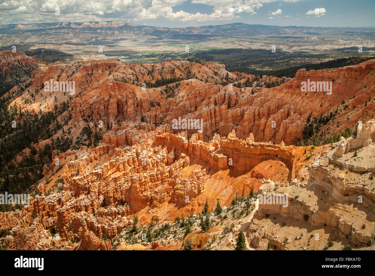 Stunning colours of Bryce Canyon - Stock Image
