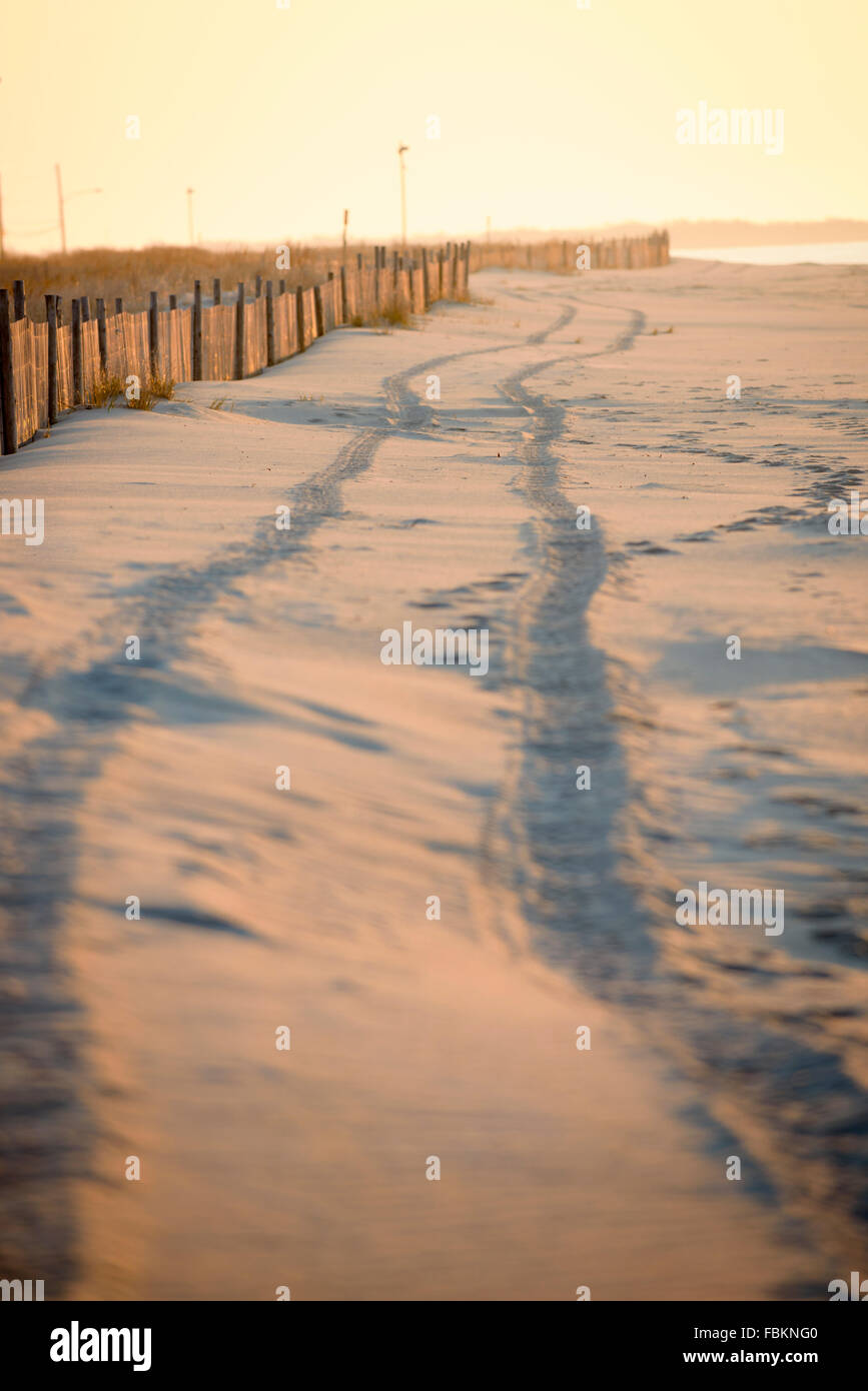 Tire tracks in the sand Cape May New Jersey. - Stock Image
