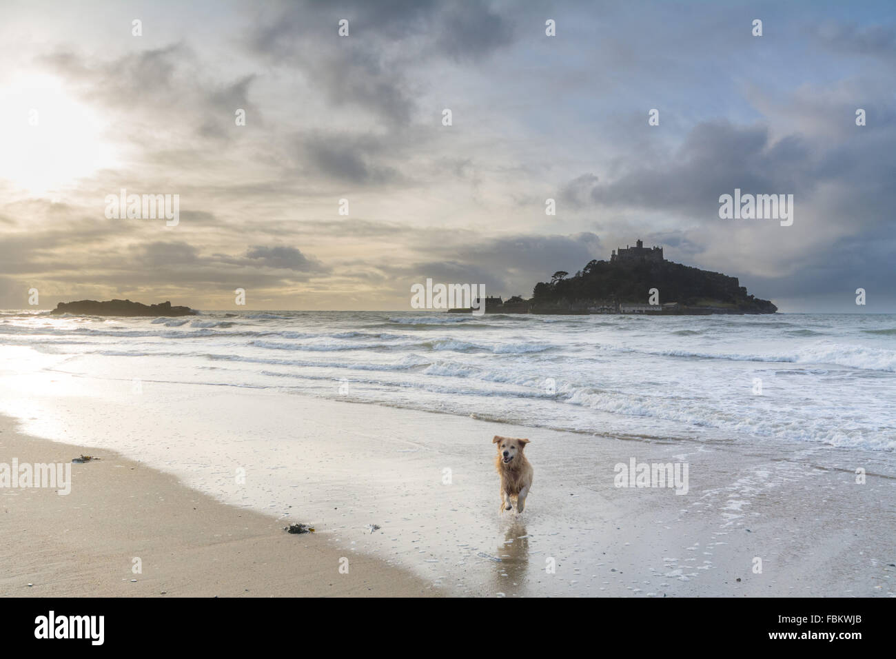 Marazion, Cornwall, UK. 18th January 2016. UK Weather. Mild with sunny intervals over Mounts Bay Cornwall. The area - Stock Image