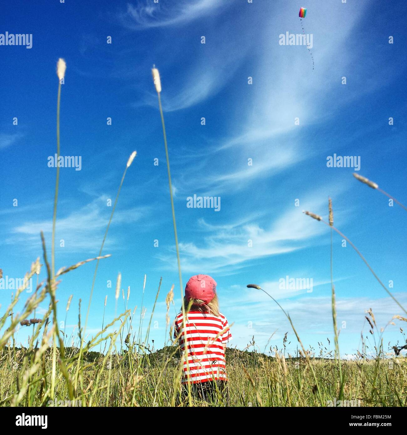 Rear View Of Boy Flying Kite In Grassy Field - Stock Image
