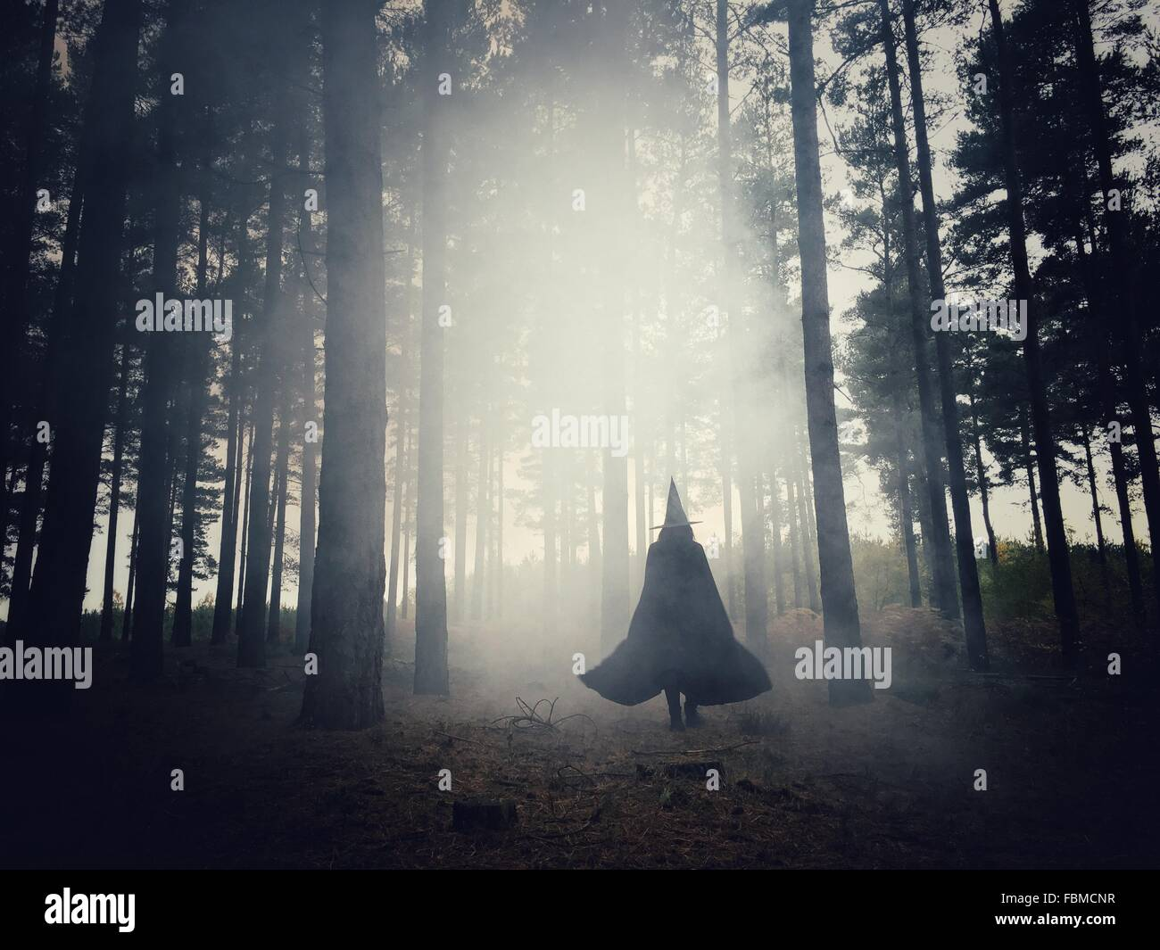 Woman dressed as a witch walking through the forest - Stock Image