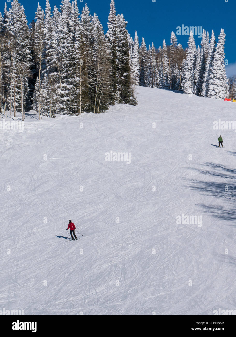 Skiers descend the High Noon trail, Steamboat Ski Resort, Steamboat Springs, Colorado. - Stock Image