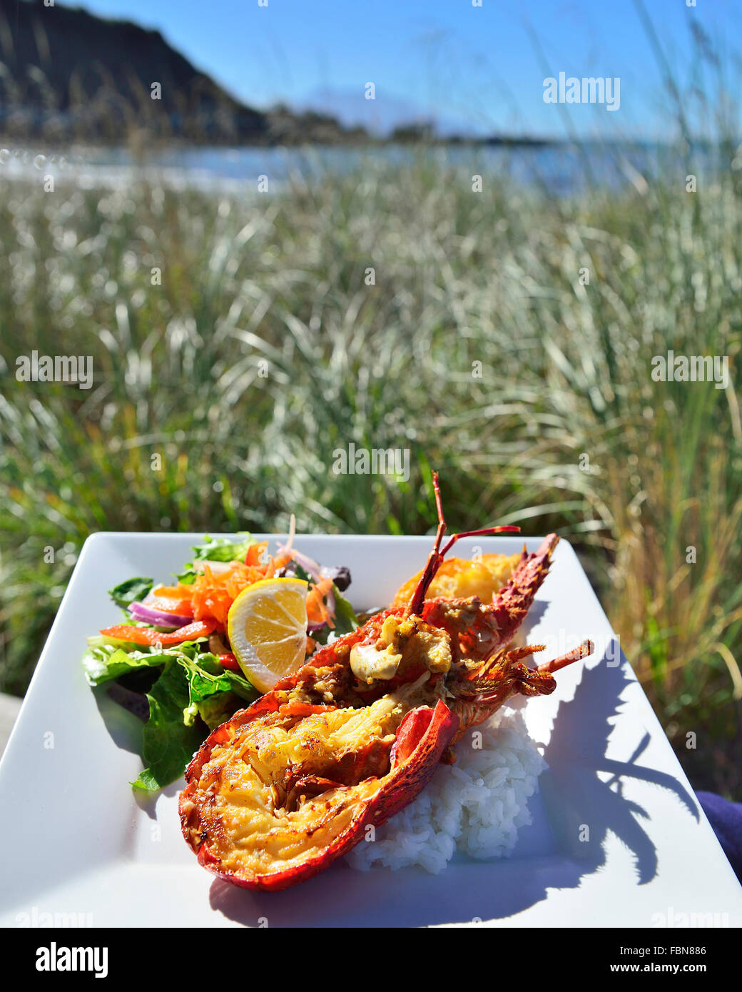 Crayfish ( Lobster) dish served al fresco eating at a road side fish cookery Kaikoura South island New Zealand - Stock Image
