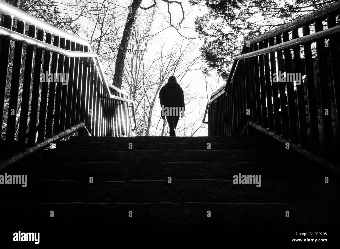 Silhouette Person Walking On Staircase In Park Stock Photo