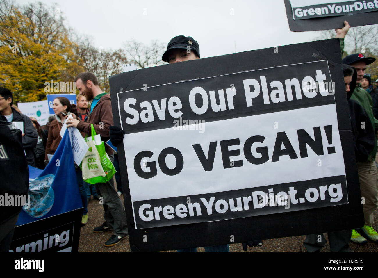 November 21, 2015, Washington, DC USA: Environmental activists protest in front of the White House (woman holding - Stock Image