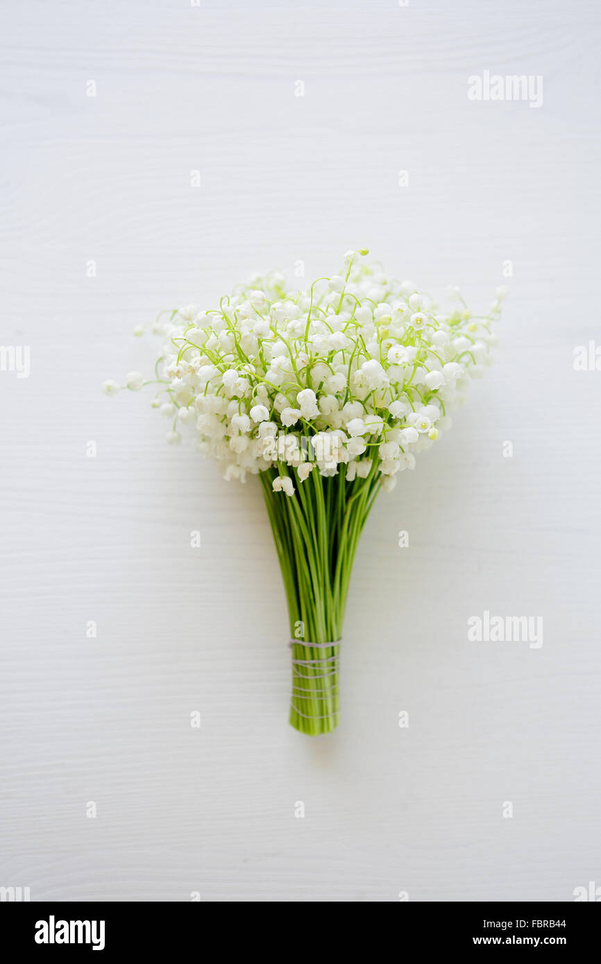 Spring Lilies Of The Valley Flowers Top View Stock Photo 93326692