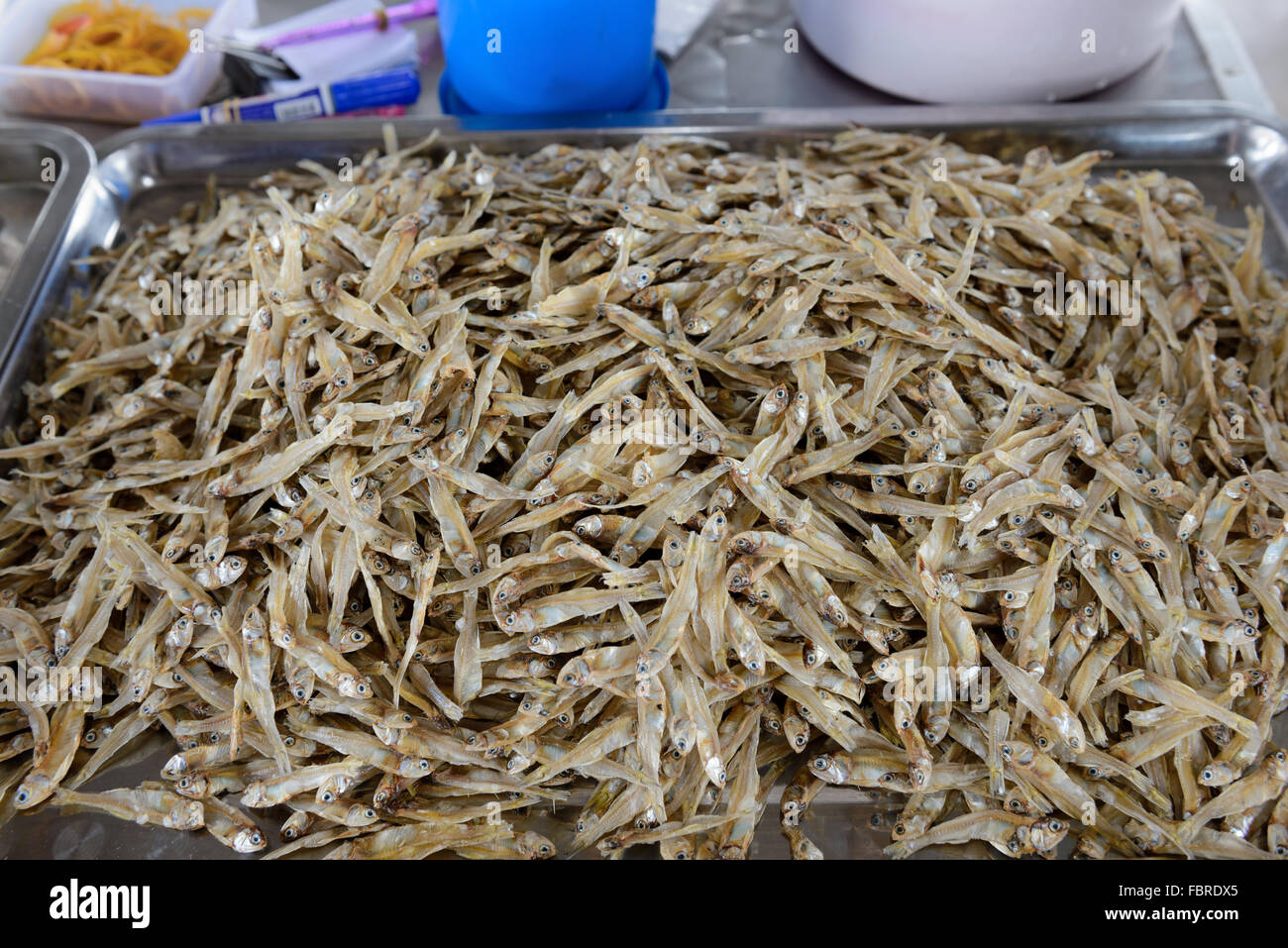 large among of small salted fish - Stock Image