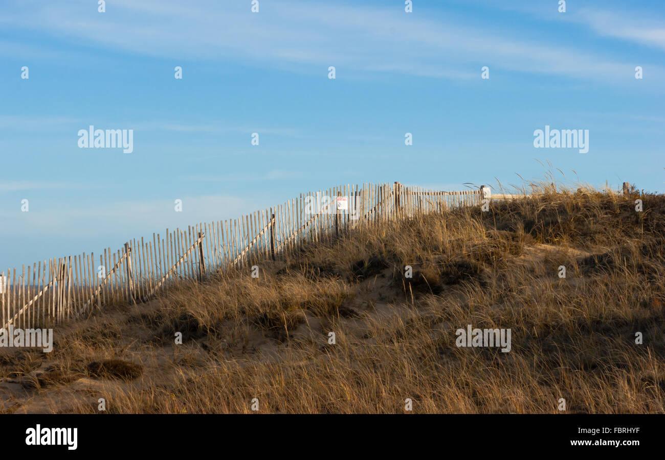 Beach Grass Fence Dunes Stock Photos Amp Beach Grass Fence
