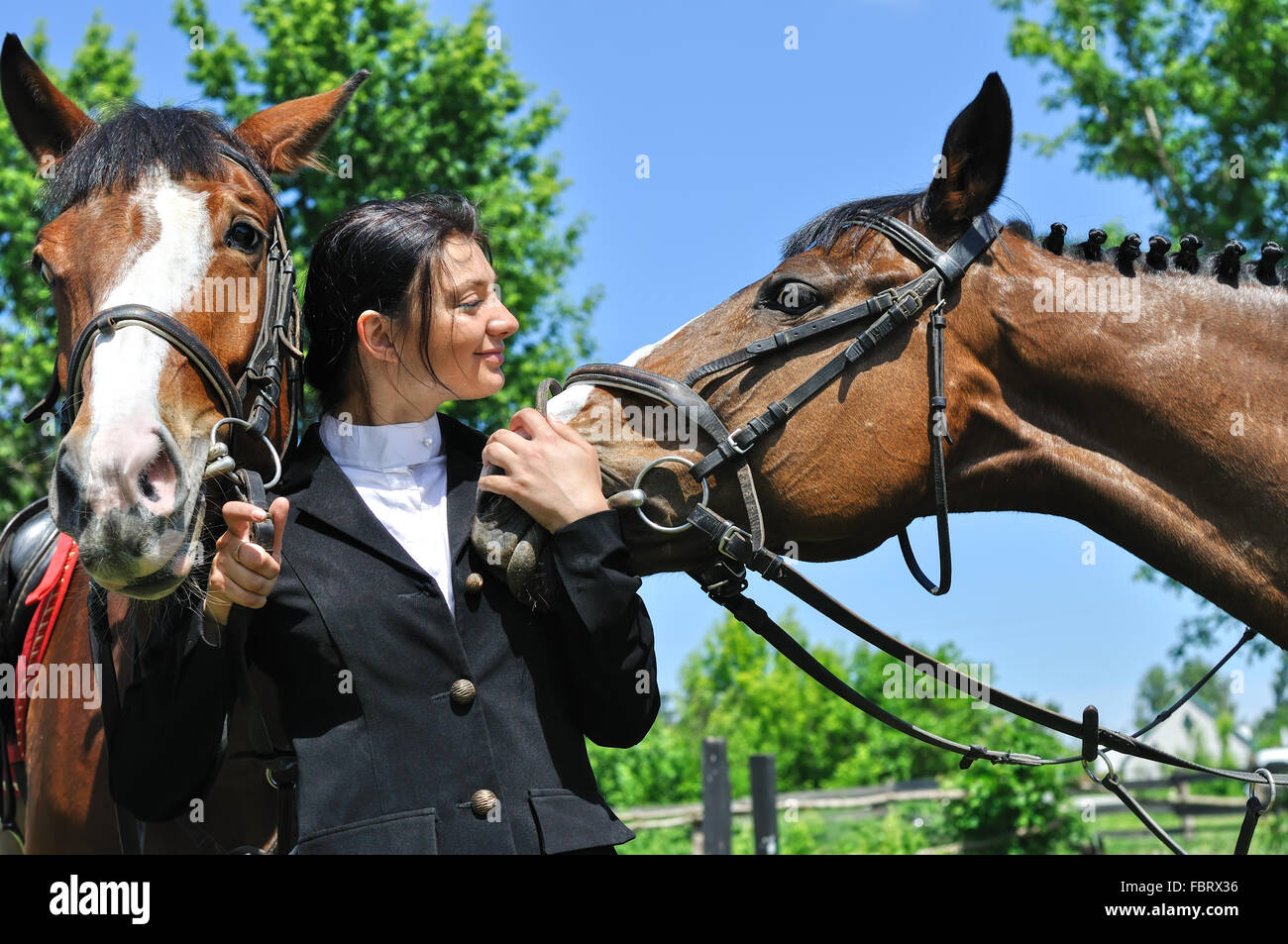 young horsewoman with two horse - Stock Image