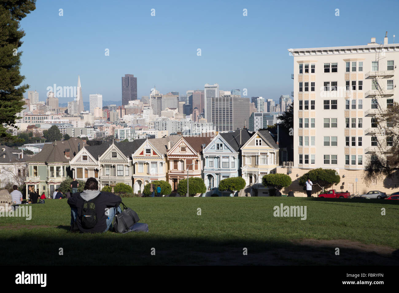 Man watching view of downtown San Francisco and the Painted Ladies from Alamo Square. - Stock Image