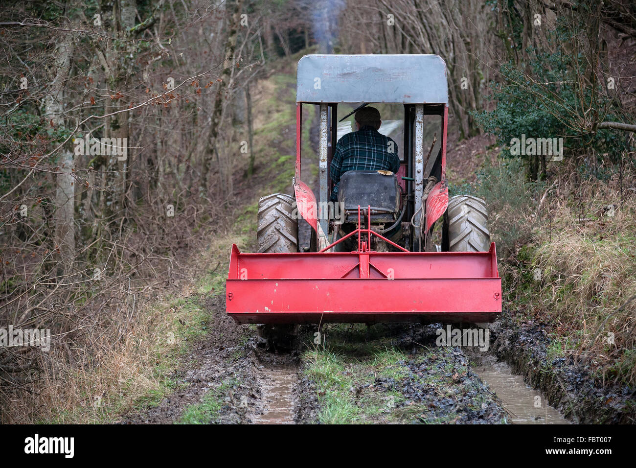 tractor tyre in muddy field, agriculture, agronomy, clay, cross-country, cultivated, dirt, dirty, drive, engine, - Stock Image