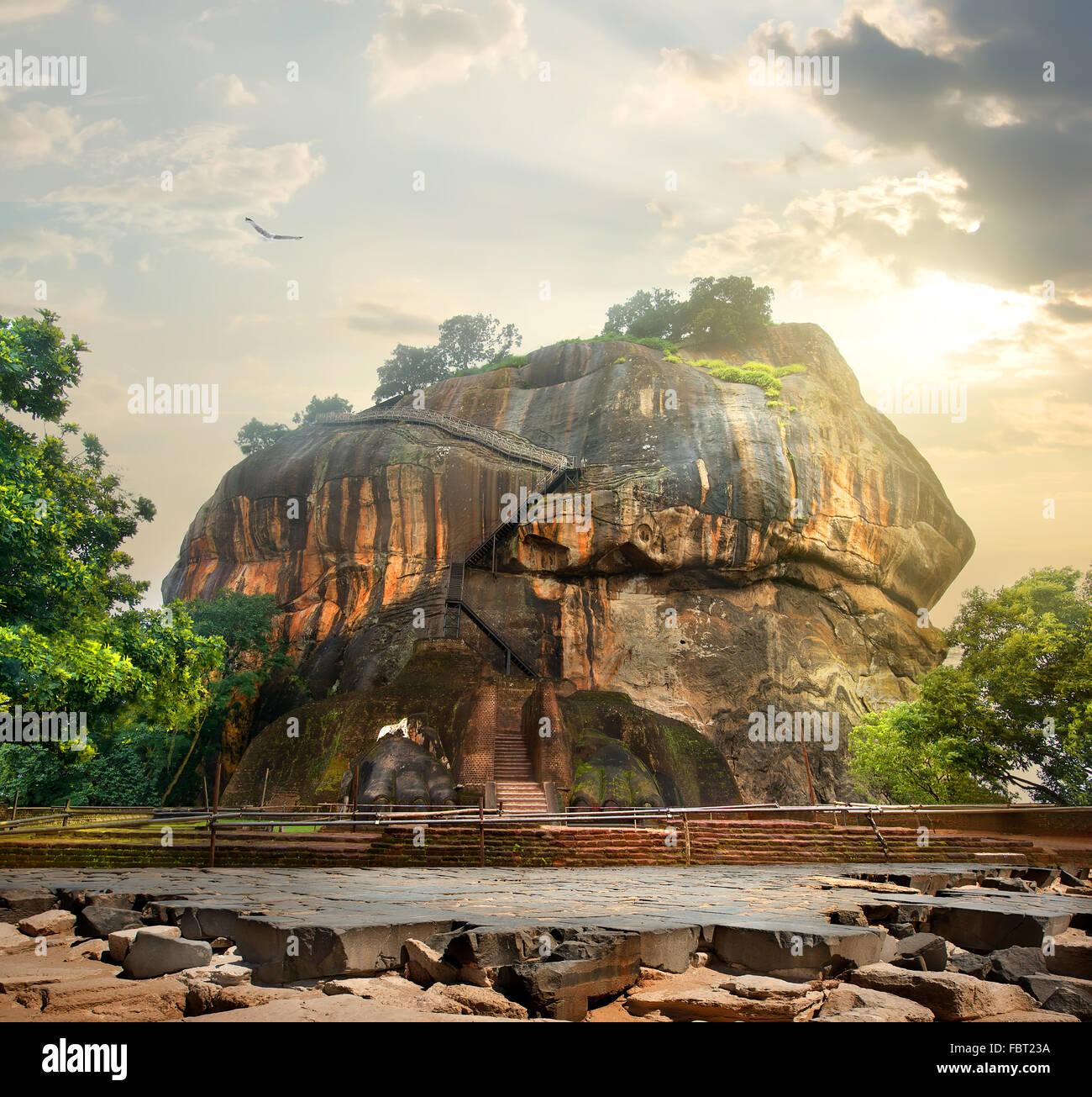 Bird over mountain of Sigiriya in Sri Lanka - Stock Image