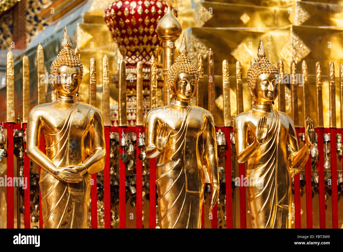 Gold Buddha statues in Wat Phra That Doi Suthep - Stock Image