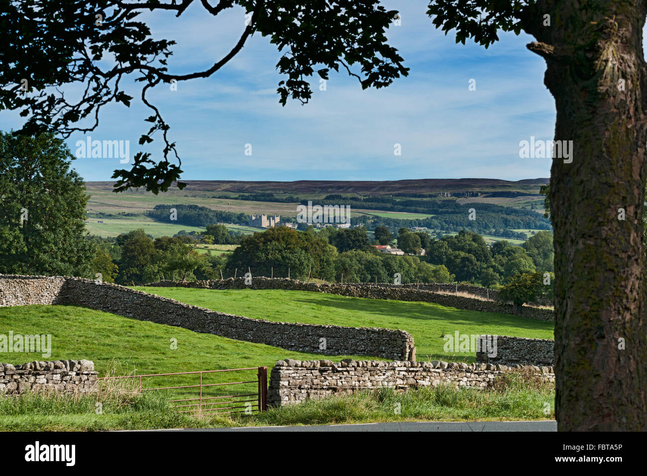 Looking across Wensleydale to Castle Bolton, North Yorkshire, England, UK - Stock Image