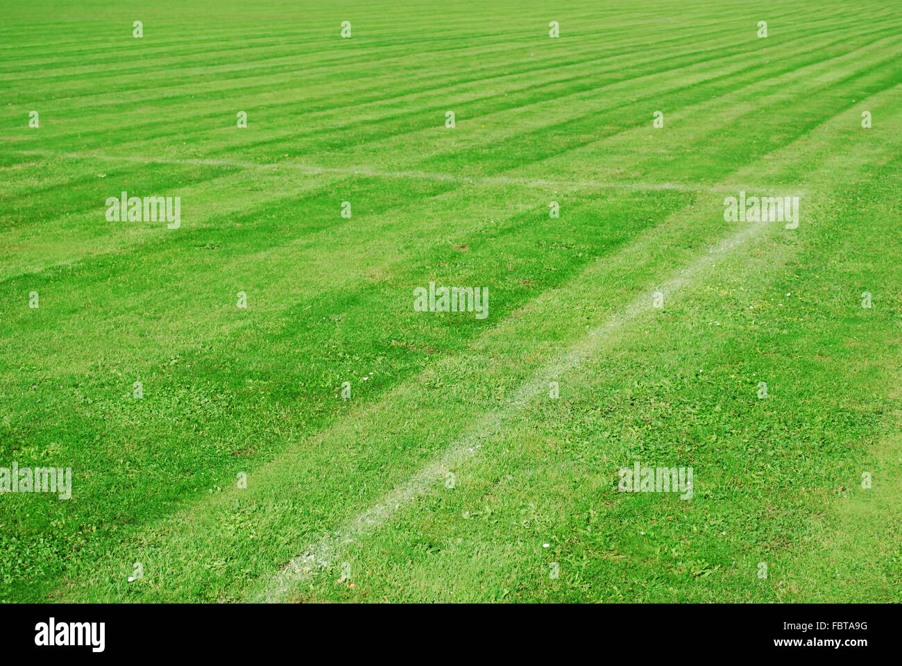 football pitch - Stock Image