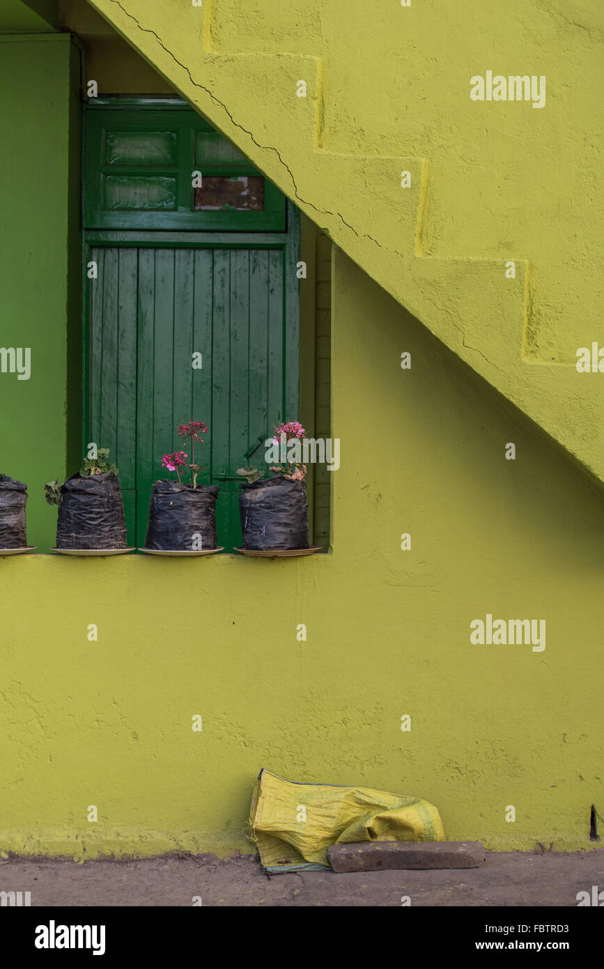 Vibrant yellow painted wall and bright glossy green door. Potted ...